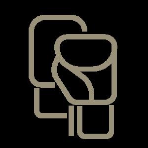 Kampfsport Icon
